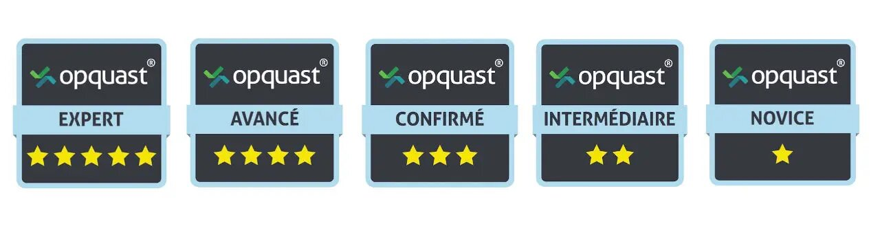 badges opquast certification qualité web de novice à expert