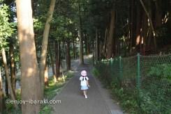大串貝塚ふれあい公園 遊歩道
