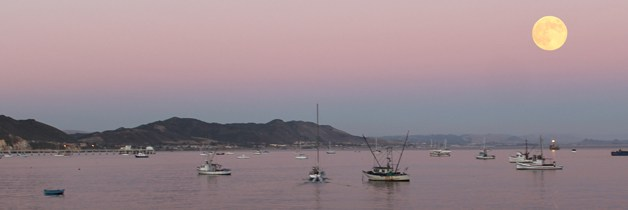 Avila Beach this week 8/19/13 – 8/25/13
