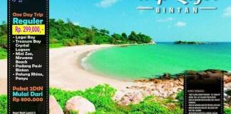 One Day Trip Bintan, Lagoi dan Treasure Bay