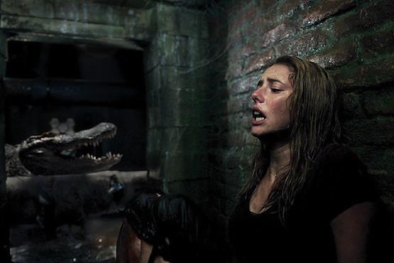 【みんなの口コミ】映画『クロール ―凶暴領域―』の感想評価評判