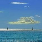 『プレバト』7月14日放送・俳句・お題は「夏の海とバス」
