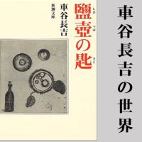 車谷長吉は凄いです。一度は読みたいその代表作は「鹽壺の匙」