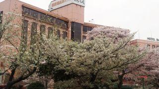 御殿場青年会議所創立55周年記念 御殿場高原ホテル 式典会場 ブライダル会場