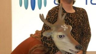 鹿 ダッソン ばんびーの
