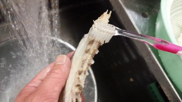 鯛づくし あら汁 作り方 歯ブラシ 血合いを取る