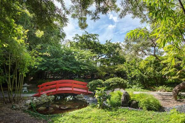 miami-beach-botanical-garden-1