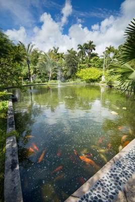 miami-beach-botanical-garden-10