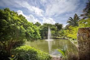 miami-beach-botanical-garden-5
