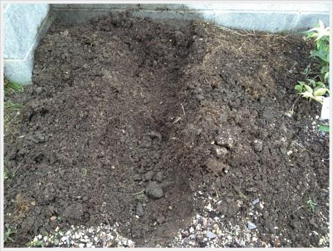 堆肥作り掘ってみた