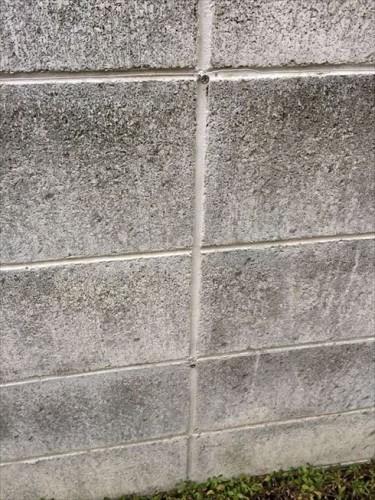 24ブロック塀にワイヤー張り完了