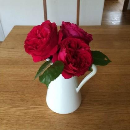 ルージュピエールドゥロンサールを花瓶に