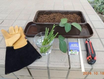 薔薇の挿し木道具