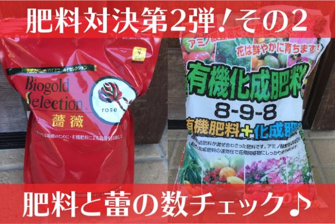 バイオゴールドセレクション薔薇の肥料対決2