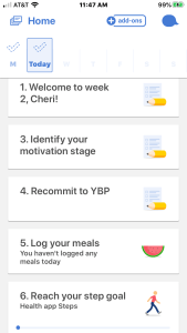 Noom App, weight loss, food logging