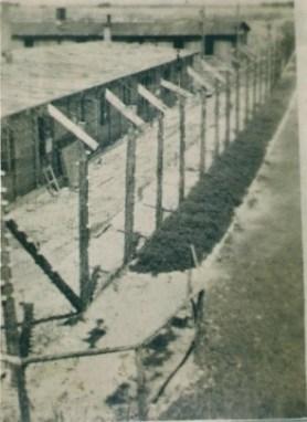 Бараки Бухенвальда