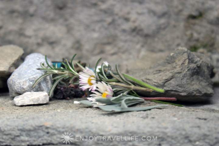 Flowers at Shrine | Bramasole | Cortona | Italy