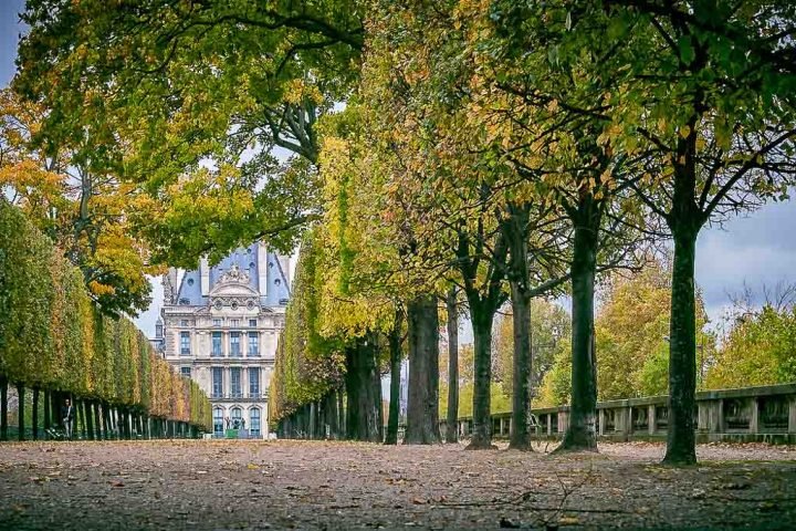 Jardin des Tuileries (Paris, France) | World Botanical Gardens