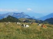 Monti della Lessinia