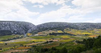 la plaine de Tautavel