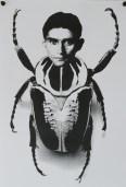 Kafka, la Métamorphose