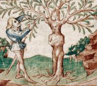 Apollon et Daphné transformée en laurier. Epitre d'Othea. Lille (détail)