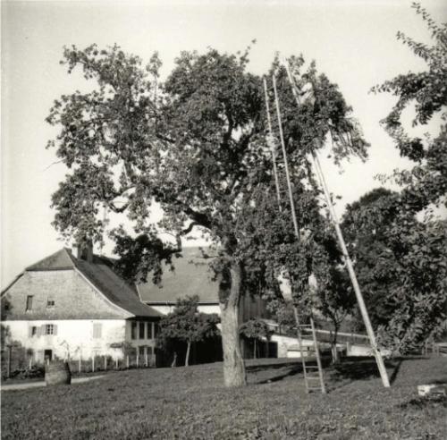 Gustave Roud. Monnéaz à Palézieux, ferme d'André Ramseyer