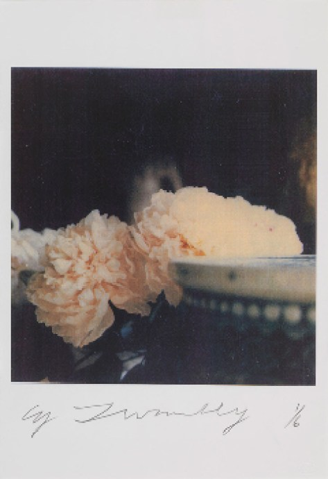 CY TWOMBLY, Peonies, Bassano in Teverina, 1980, color dry-print