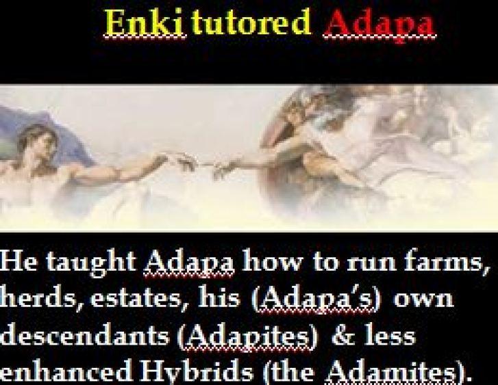 Enki tutored Adapa trim