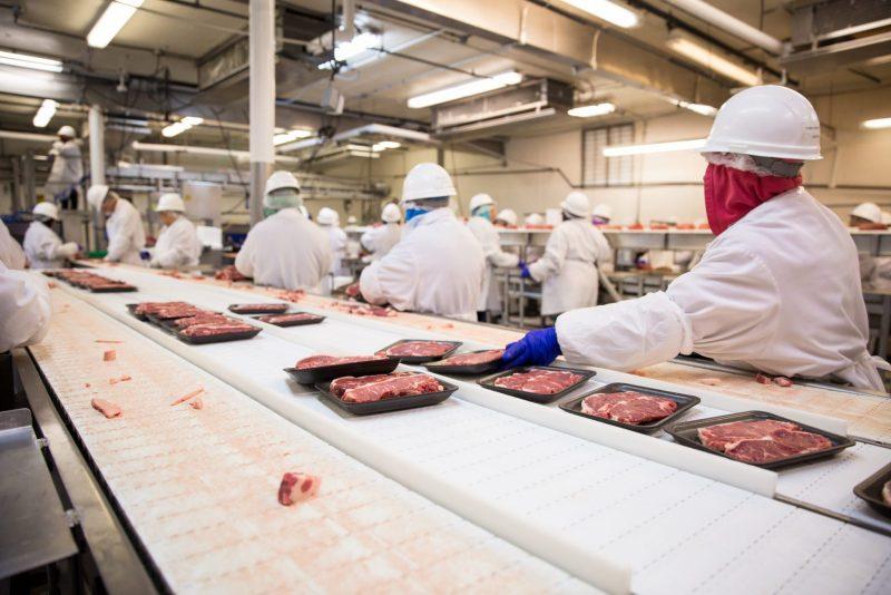 Situación de trabajadores latinos en plantas procesadores de carne