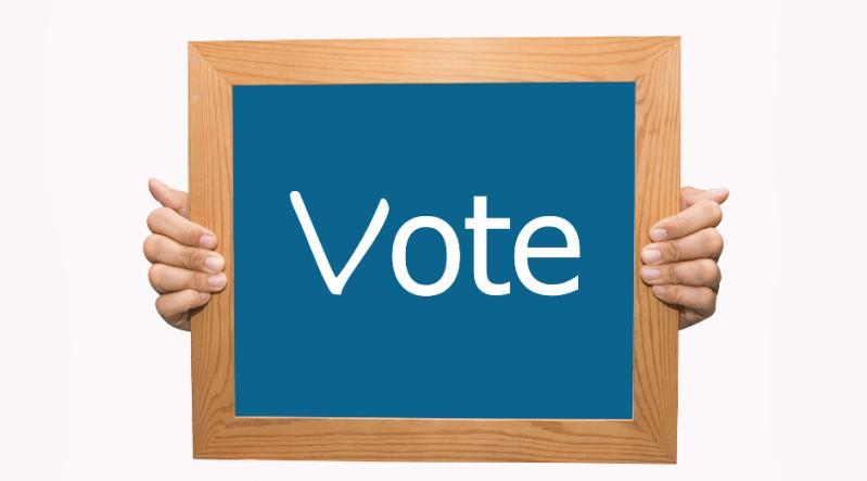 votar en las elecciones de noviembre 2020