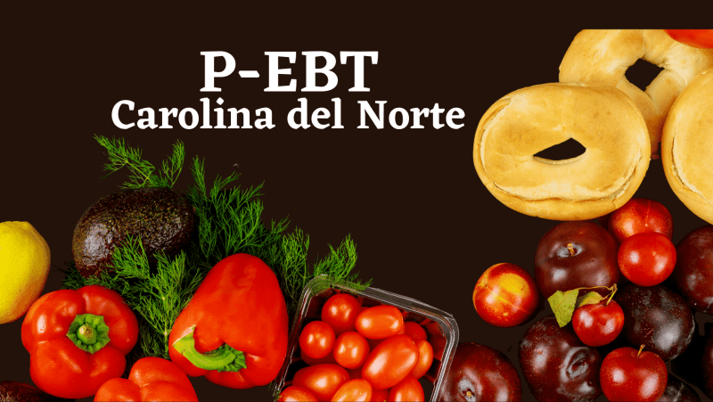programa P-EBT