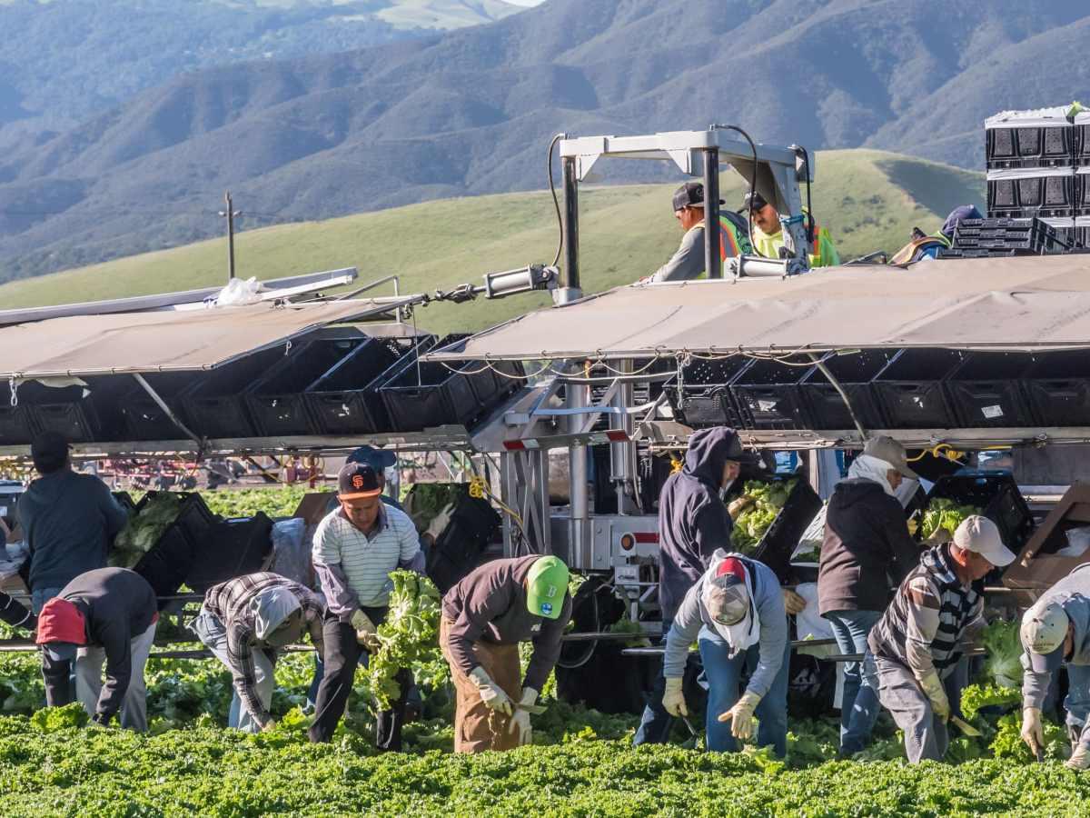 Salario de un trabajador agrícola en Carolina del Norte