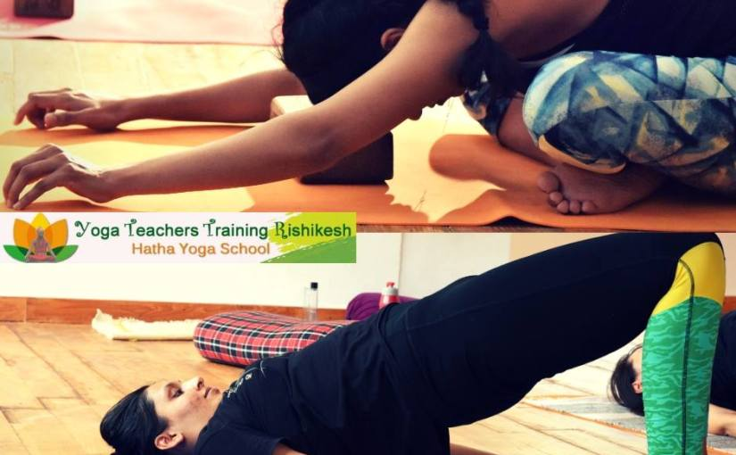 What is the Difference between Yoga and Yoga Therapy?