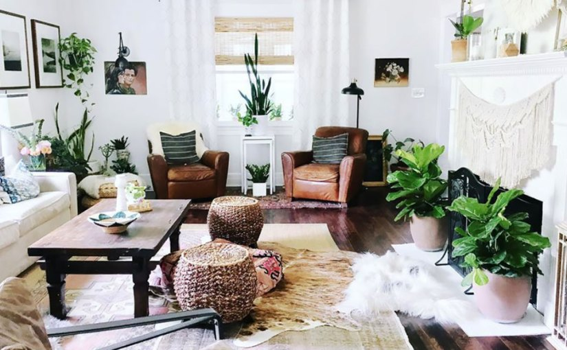 Lucky Color Green: 5 Feng Shui-Friendly House Plants