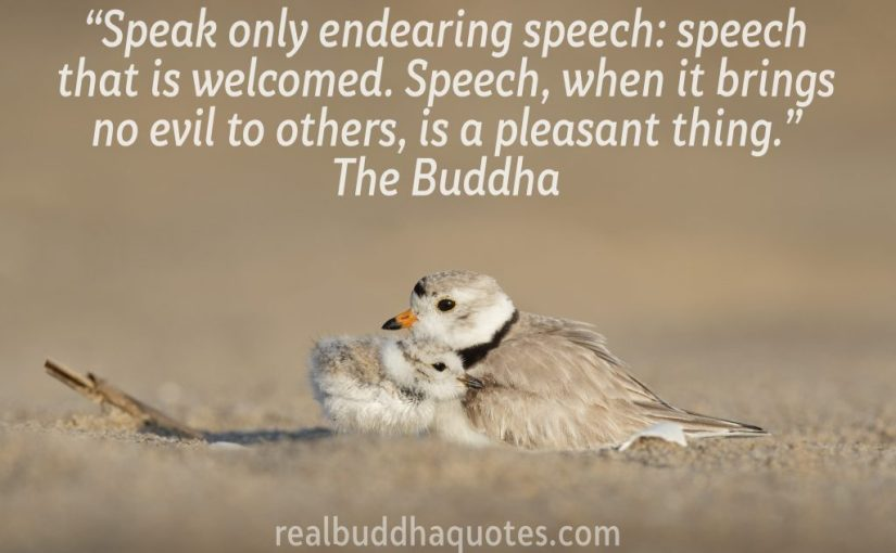"""Speak only endearing speech, speech that is welcomed. Speech, when it brings no evil to others, is a pleasant thing."" – Real Buddha Quotes"