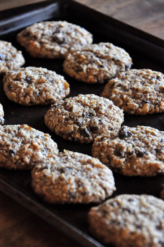 Almond Meal Cookies with Chocolate Chips and Coconut_4
