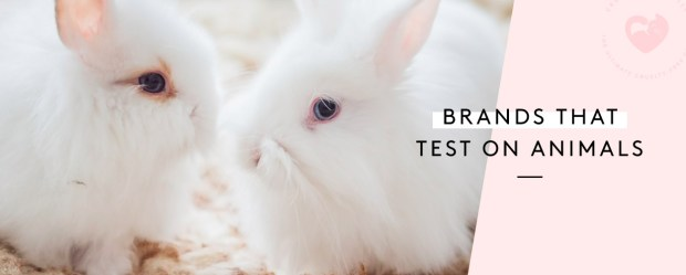 Companies That Test On Animals — 2018