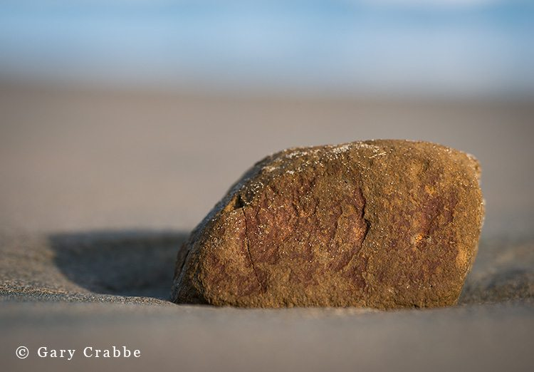 Small rock on sandy beach, Drakes Beach, Point Reyes National Seashore, Marin County, California