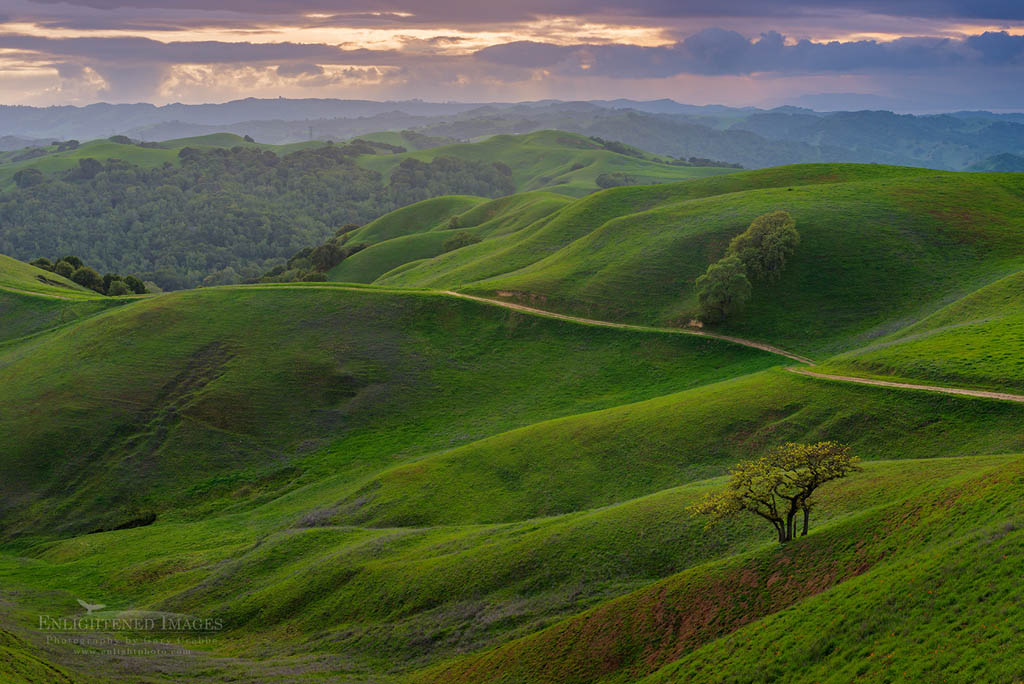Photo: Storm clouds roll over green hills in spring at sunset, Briones Regional Park, Contra Costa County, California