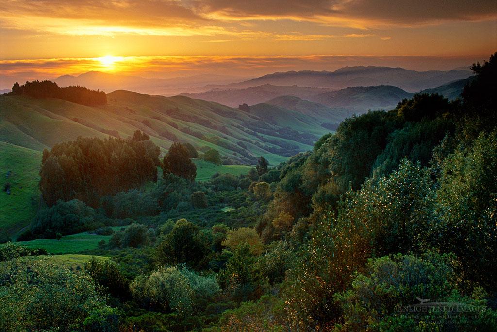 Photo: Spring sunrise over green hills, near Orinda, California