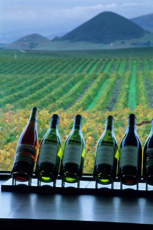 Photo: Edna Valley Vineyards tasting room, Edna Valley, near San Luis Obispo, San Luis Obispo County, California