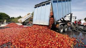 Europa sufre por la crisis pero desperdician alimentos