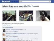Cuenta de Facebook que denuncia matanza de canes