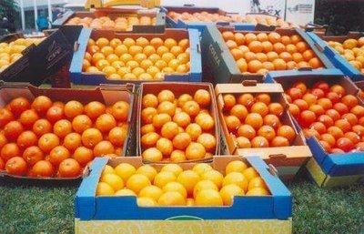 Exportaciones agro se verán favorecidas con la firma del TLC con Noruega