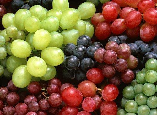 Las exportaciones del sector agro crecieron gracias a productos como uvas frescas