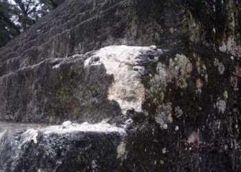 Daños en el Templo II de Tikal. (Foto Prensa Libre: Alex Rojas)