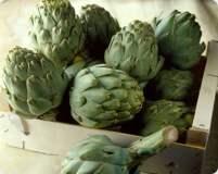 Las exportaciones de alcachofa reflejaron un superávit en los primeros cuatro meses del año.