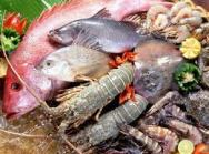 Las exportaciones de  pescados y mariscos peruanos tendrán un mayor impulso en Suecia y Noruega,