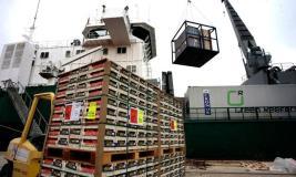 Exportaciones peruanas cerrarán el año en rojo.